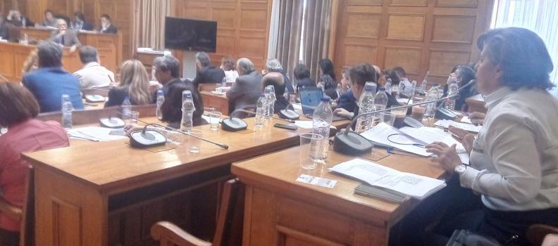 Τοποθέτηση της Περιφερειάρχη στην αρμόδια Επιτροπή της Βουλής για το προσφυγικό-μεταναστευτικό