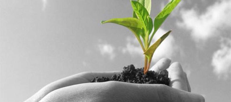 38,4 εκ. ευρώ εξασφάλισε η Περιφέρεια Βορείου Αιγαίου από το Πρόγραμμα Αγροτικής Ανάπτυξης 2014 – 2020