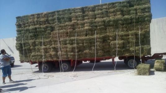 Η Περιφέρεια Βορείου Αιγαίου στηρίζει τους κτηνοτρόφους του Αγίου Ευστρατίου