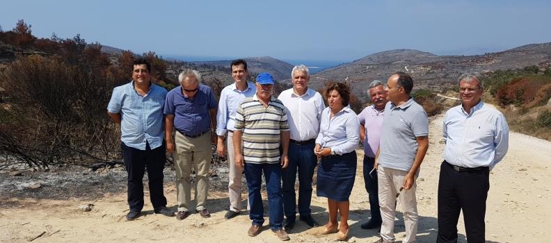 Επίσκεψη της Περιφερειάρχη στην πληγείσα από την πυρκαγιά περιοχή της Χίου